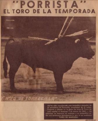 PORRISTA DE TORRECILLAS