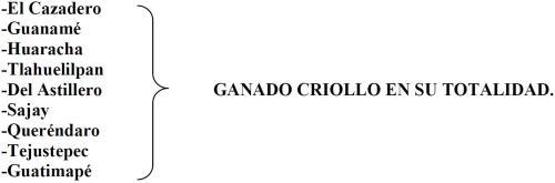 GANADERÍAS MEXICANAS SIGLO XIX
