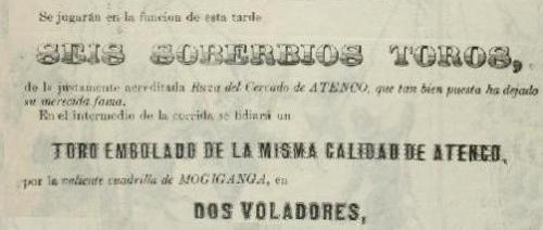 DETALLE DE LOS VOLADORES...