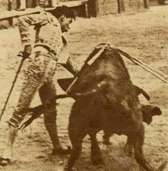 FERMÍN ESPINOSA_ARMILLITA