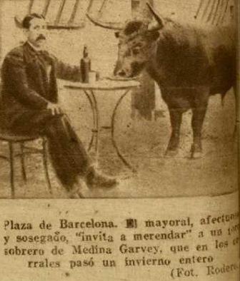SOBRERO DE MEDINA GARVEY