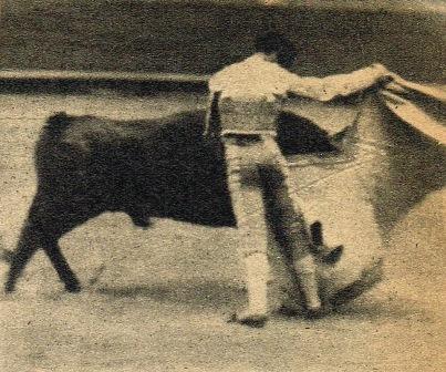 CALESERO CON LA CAPA