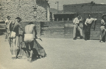 https://ahtm.files.wordpress.com/2014/07/torerillos-entrenando-en-la-p-de-t-nonoalco.jpg