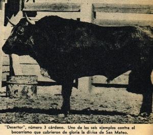 DESERTOR DE SAN MATEO_1946