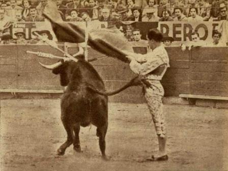 CALESERO_1954