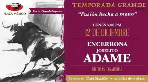 dc3a9cima-corrida-diciembre-12