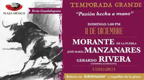 novena-corrida-diciembre-11